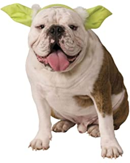 Star Wars - Disfraz de Ewok para mascota, Talla XL perro (Rubies ...