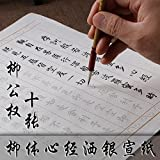 Chinese Calligraphy Book Tracing Sheets Copy Book of Heart Sutra 10 Sheets