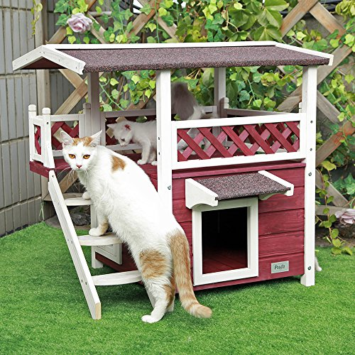 Petsfit 2 Story Outdoor Weatherproof Cat House With Stairs And Escape Door