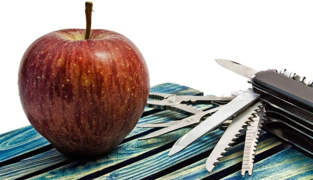 Rompecabezas 1000 Piezas Rompecabezas para Adultos Rompecabezas de Madera Manzanas y Frutas-Arte DIY Juego de Ocio Diversión Juguete Regalo Adecuado Familia Amigos (ELL071)