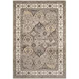 Safavieh Atlas Collection ATL673C Taupe and Ivory Oriental Viscose Area Rug (6'7 x 9'6)