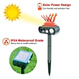 Humutan Ultrasonic Dog Repellent, Solar Powered and Waterproof Repeller for Cats, Dogs and More