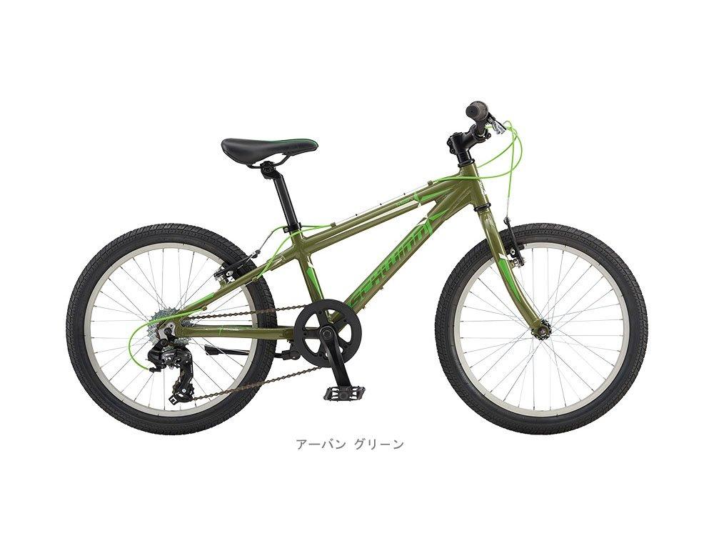 シュウィン(SCHWINN) 子供用自転車 SCW MESA 20 アーバン グリーン 2018 アーバングリーン B01M27HVFL