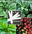 Organic Bulk 3 Spinach Seeds Survival Seeds 760 Seeds Upc 646263360675 + 5 Plant Markers Bloomsdale Corvair