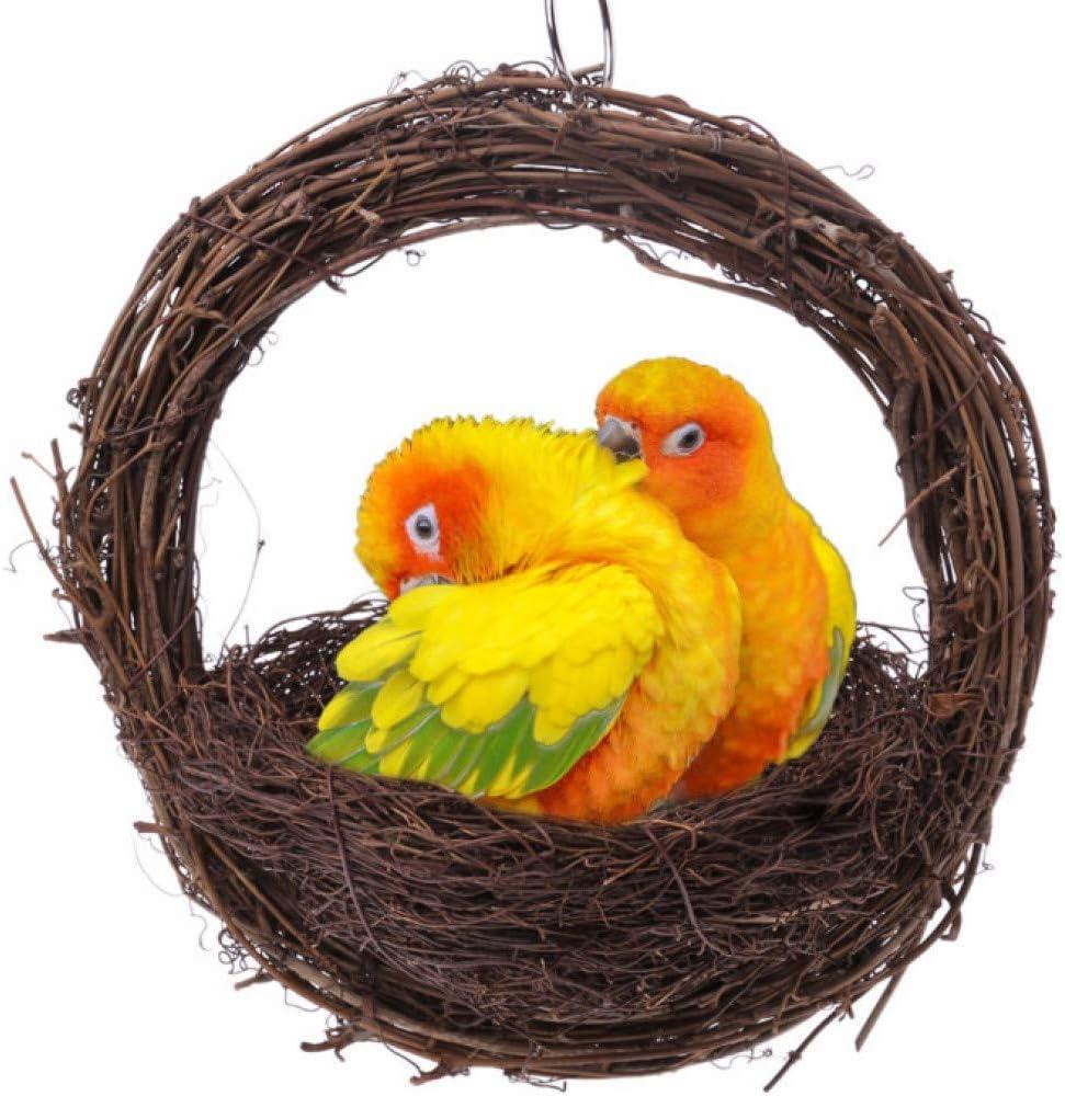 RJRK Nido De Cría De Aves Nido De Pájaro Colgante Jaula De Huevos De Loro Pájaro Hecho A Mano,Colgante para Jardín Jardín Decoración Artesanías Suministros De Aves Accesorios