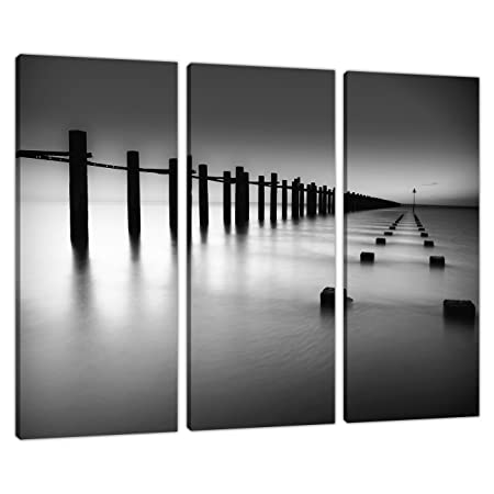 Set of 3 black white canvas wall art pictures living room prints 3085
