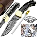Buffalo Horn 6.5'' Beautiful Custom Handmade Damascus Steel Brass Bolster Back Lock Folding Pocket Knife Sharpening Rod & Stainless Steel Camel Bone Pocket Knife - Hunting, Fishing, Outdoors, Tactical