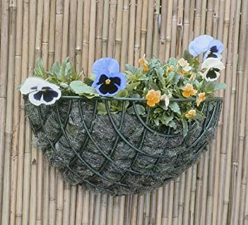 Standard Wire Wall Basket Planter 35cm Amazon Co Uk Garden
