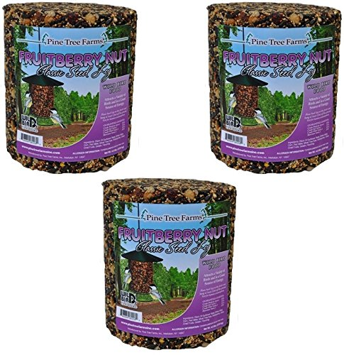 (Pine Tree Farm Fruit Berry Nut Classic Seed Log, 32-Ounce (Pack of 3))