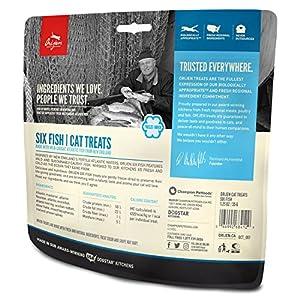 Orijen Six-Fish Freeze-dried Cat Treats 1.25 Oz