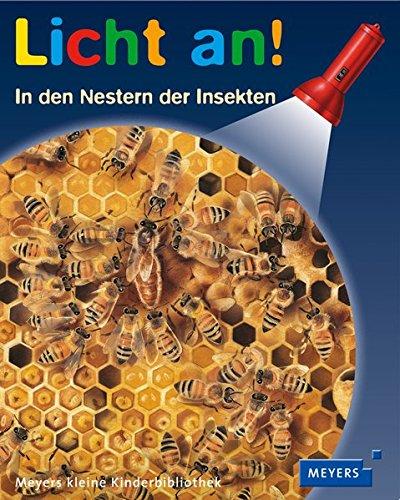 In den Nestern der Insekten: Licht an! 05