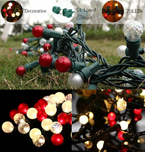 Glass Led Christmas Lights in Florida - 9