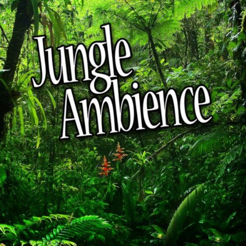 jungle ambience nature sounds atmosphere collection mp3 downloads. Black Bedroom Furniture Sets. Home Design Ideas