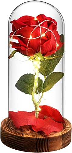 Beauty and the Beast Red Enchanted Rose