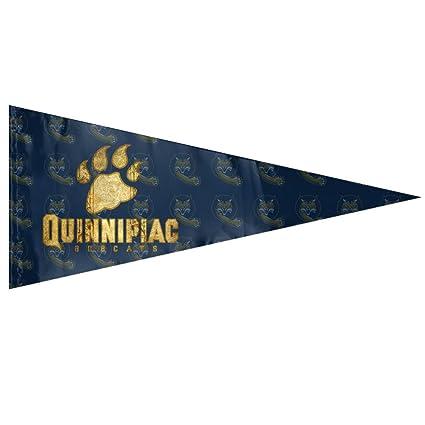 Amazon.com   NCAA Quinnipiac University QU Quinnipiac Bobcats Logo ... 9d91c5f98