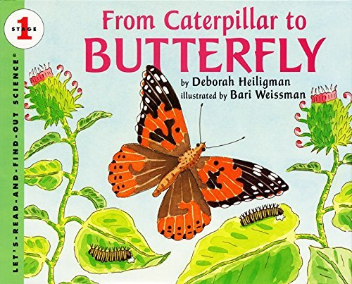 1996 Caterpillar - From Caterpillar to Butterfly (Let's-Read-and-Find-Out Science, Stage 1) by Deborah Heiligman (1996-05-16)