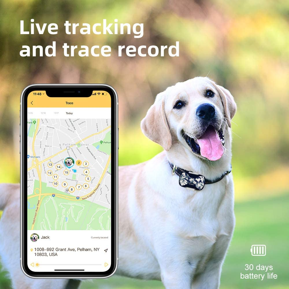 30 Days Battery Life IPX7 Waterproof GPS Tracker for Cat and Dogs PETBIZ G20 GPS Pet Tracker Nationwide Positioning /& Activity Monitor