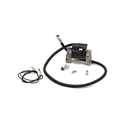 Briggs stratton 398811 ignition coil for 7 16 hp horizontal and briggs stratton 398811 ignition coil for 7 16 hp horizontal and vertical single cylinder publicscrutiny Choice Image