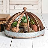 Round Rustic Metal Tray with Wood and Chicken Wire Cloche