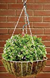 Orbit 56318 Hanging Basket Drip Irrigation Mist Watering Kit with Hose-End Timer