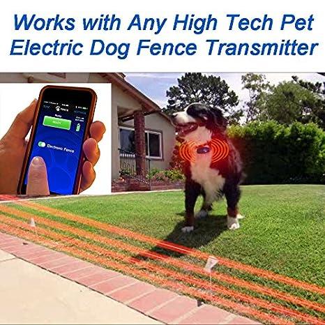 amazoncom high tech pet bluefang smart phone electric dog fence training and bark stop system x22 navy blue high tech pet pet supplies