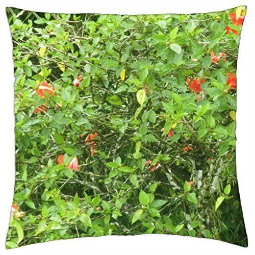 (Flowers from St. Lucia Islands - Throw Pillow Cover Case (16)