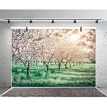 Amazon.com : Leyiyi 10x8ft Spring Park Photography