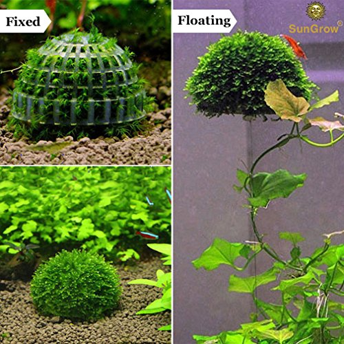 Image of 3-Piece Plastic Moss Stones - Natural Aquarium Water Filter - Live Plant Holder - Bio Ball for Fish & Shrimp Tanks - Submerged or Floating Ball Décor - Easy Set-up - Cultivation Platform