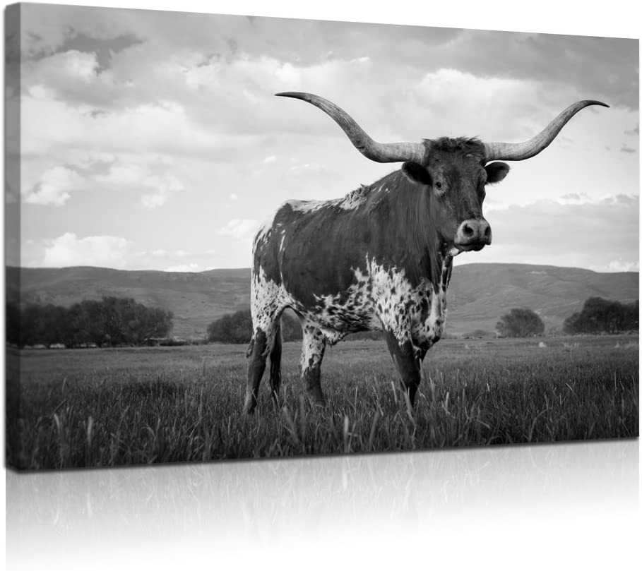 "Visual Art Decor Large Animals Canvas Wall Art Texas Longhorn in Sunset Farm Picture Prints Framed and Stretched Black and White Painting for Modern Home Living Room Decoration (24""x36"")"