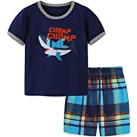 HILEELANG Boys Summer Outfits Short Sleeve T-Shirt & Shorts Sets Playwear Clothes 2 Piece 2-7Y
