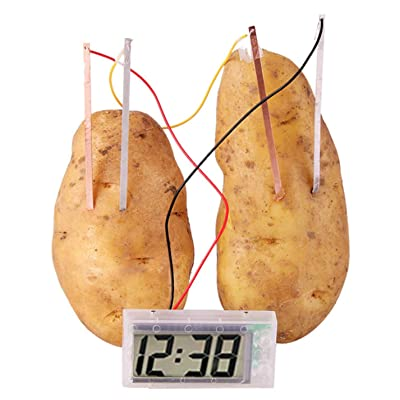GogoForward Potato Powered Clock Novel Green Science Project Experiment Kit kids Lab Battery: Toys & Games