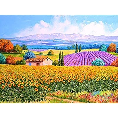 Hhobake Jigsaw Puzzle 500 Pieces for Adult - Jigsaw Puzzle Idyllic Scenery Adult Children Puzzle, Puzzle Intellective Educational Toy, Family Entertainment Educational: Toys & Games