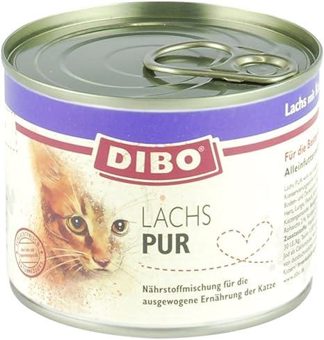 dibo Cat salmón, 6 x 185 g de lata, gato Forro, húmedo Forro ...