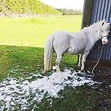 EquiGroomer Deshedding Brush for Horses | Undercoat