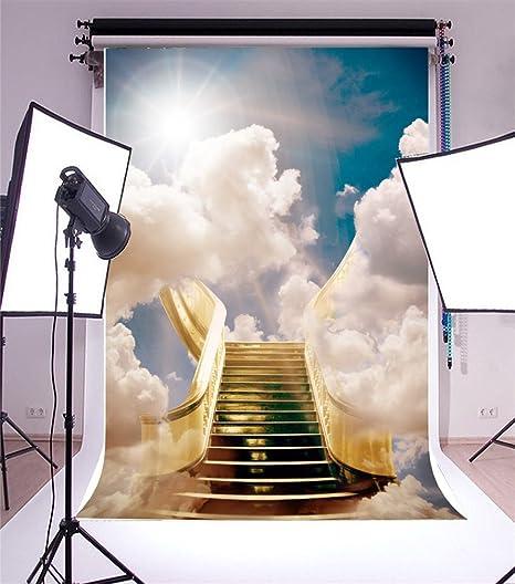 YongFoto 1x1,5m Vinilo Fondo de Fotografia Soñador Cuento de Hadas Escalera al Cielo Sol Nube Blanca Telón de Fondo Fiesta Niños Boby Boda Adulto Retrato Personal Estudio Fotográfico Accesorios: Amazon.es: Electrónica