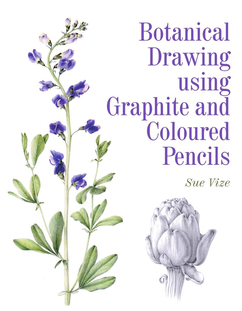 Botanical Drawing Graphite Coloured Pencils product image