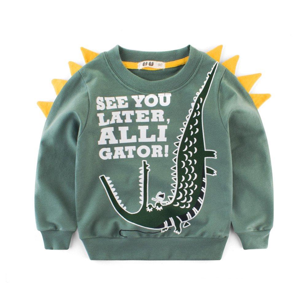 Mrsrui Boys Long Sleeve Dinosaur T Shirt Kids Cotton tee Tops