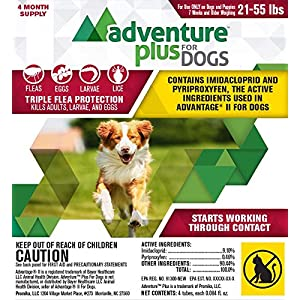 Adventure Plus for Dogs 4pk 21-55lb 43