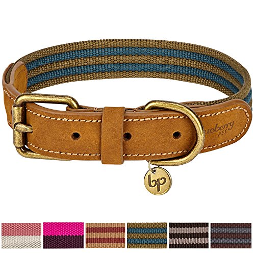 Blueberry Pet 6 Colors Vintage Staple Striped Soft Genuine Leather and Polyester Webbing Dog Collar in Navy and Olive, Medium, Neck 15'-18', Adjustable Collars for Dogs