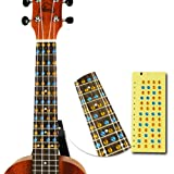 Self-Conscious Ukulele Fretboard Sticker Note Map Scale Fingerboard Frets For Beginner Learner Practice Guitar Parts & Accessories
