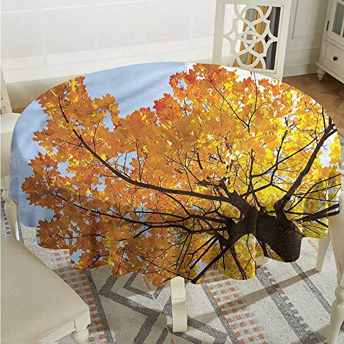 Tim1Beve Leaves Waterproof Table Cover Maple Leaves Fall Autumn Party Decorations Table Cover Cloth D70 INCH