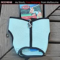 Small Animal Harness Guinea Pig Forret Hamster Rabbit Squirrel Vest Clothes Lead (Large, Light Blue)