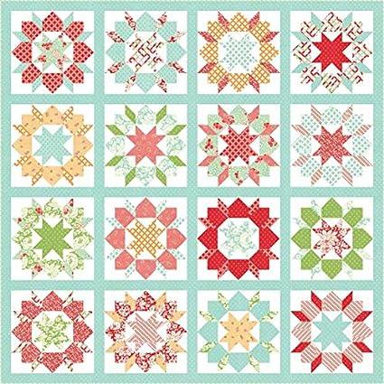 Amazon Swoon Sixteen Quilt Pattern 60 Blocks Fat Quarter Enchanting Fat Quarter Quilt Patterns