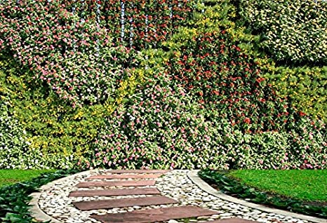 Laeacco Flower And Plant Wall Vertical Garden Photography Background 10x6 5ft Spring Colorful Flowers Leaves Wall Park Pathway Green Grassland Yellow
