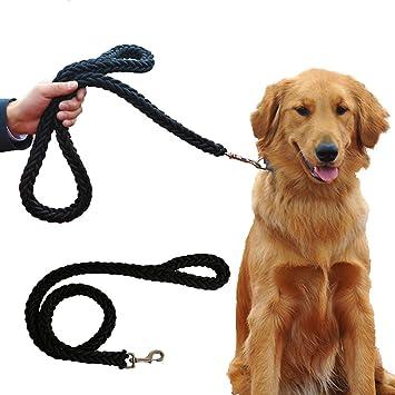 Mr.Dog Dick Premium Hundeleine in Schwarz Grün für große und kräftige Hunde    07b3228a22