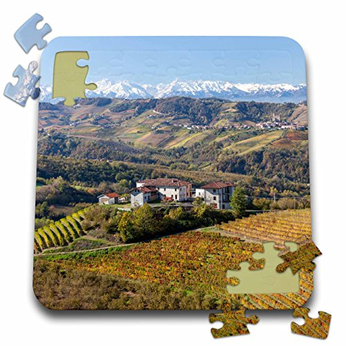 3dRose Danita Delimont - Italy - Vineyards, Alba, Langhe, Piedmont, Italy - 10x10 Inch Puzzle (pzl_227676_2)