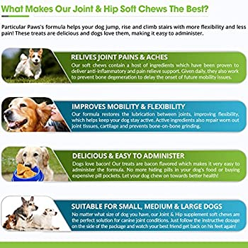 Glucosamine For Dogs - Treats - Joint & Hip Formula With Msm, Chondroitin & Hyaluronic Acid - 65 Soft Chews 4