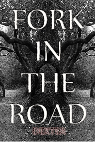 FORK IN THE ROAD :  The Culmination Of Angst (Poetic Lyrics Book 1)