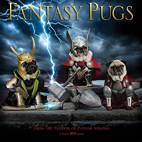 Fantasy Pugs 2019 12 x 12 Inch Monthly Square Wall Calendar by Wyman, Funny Animals