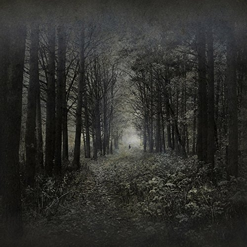 Halloween Vinyl Photography Background 8X8ft Forest Theme Computer-Printed Seamless Pictorial Cloth Waterproof Photo Studio Backdrop